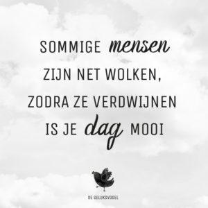 quote, de geluksvogel, geluk, gelukkig, spreuk, sommige mensen zijn net als wolken, zodra ze zijn verdwenen is je dag mooi