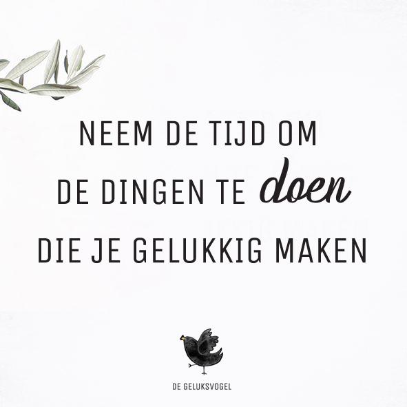 insta_quote_degeluksvogel_neemdetijd